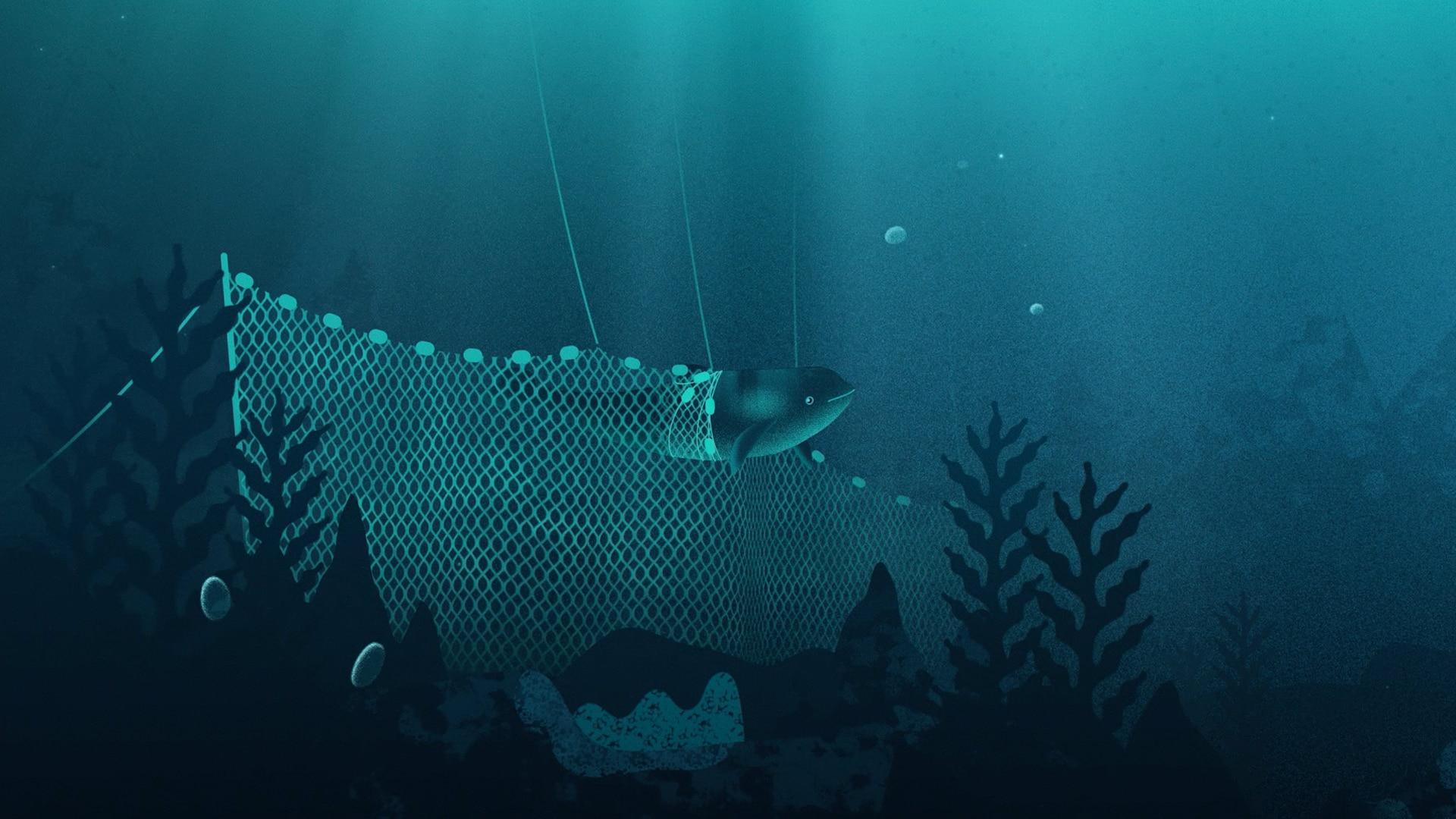 WWF Tumlaren Animerad film